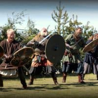The Viking Festival